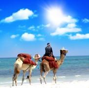 Kamelritt bei einer Marokkoreise